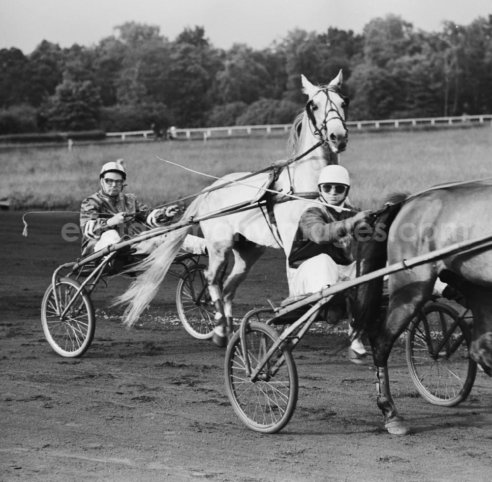 Berlin - Lichtenberg: Horse racing at the racetrack Karlshorst with