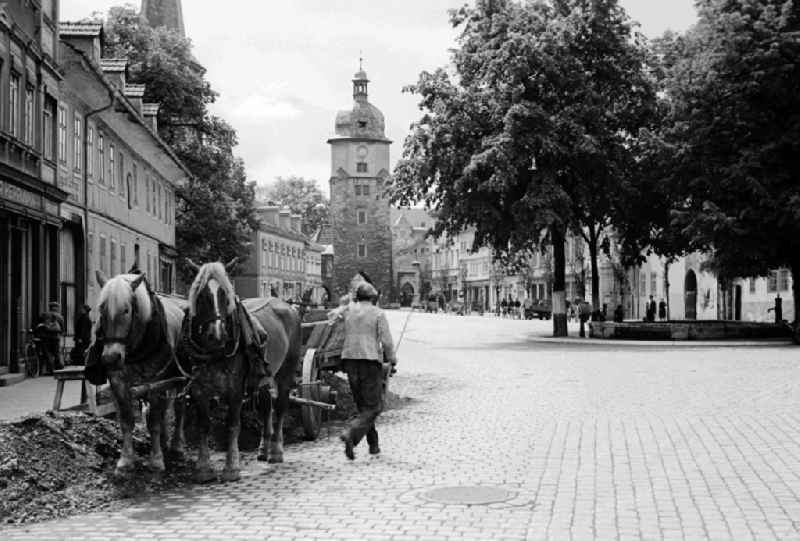 A horse and cart on the Ried in Arnstadt in the federal state Thuringia in Germany
